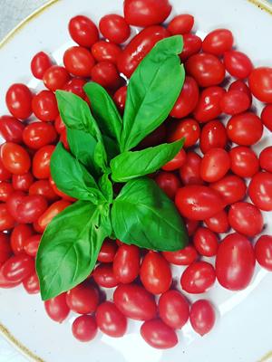 tomatitos-del-vesubio